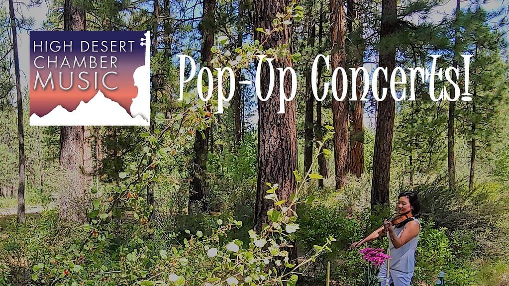 Pop-Up Concerts